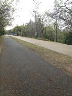 Empty trail on a wonderful Saturday!