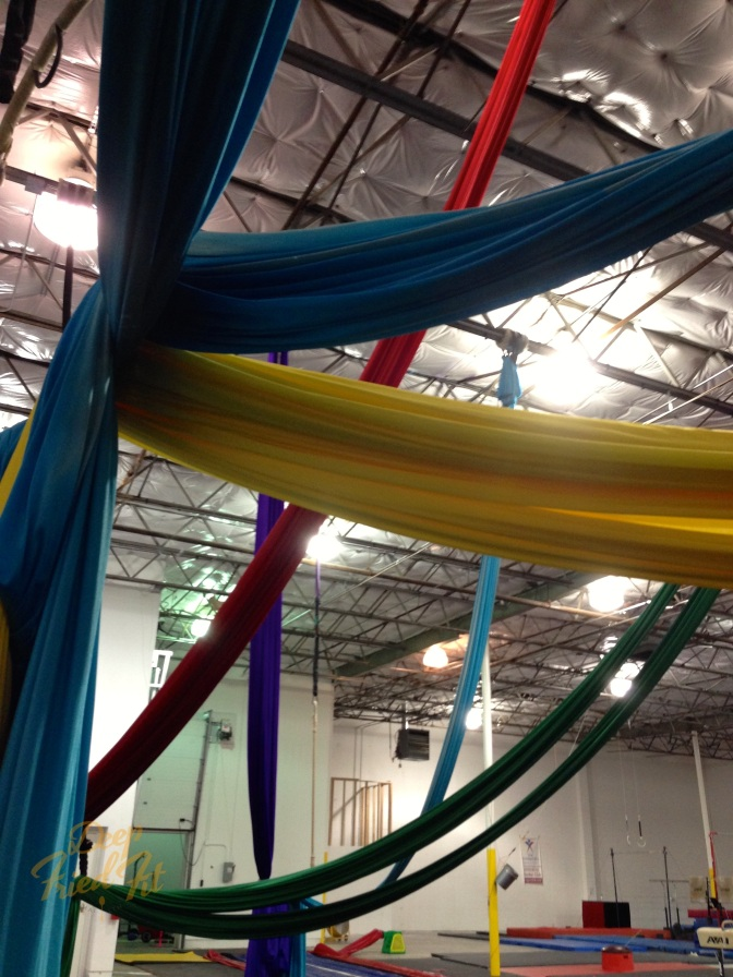 Fitness Review: Aerial Silks with Lone Star Circus